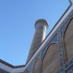 tashkent till 245